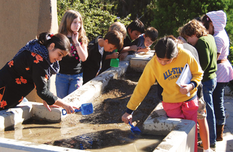 Children exploring water in Forces that Shape the Bay