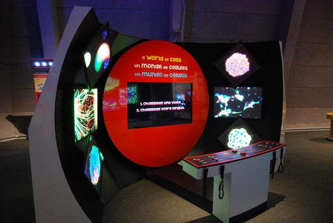 Super Cells exhibit screen