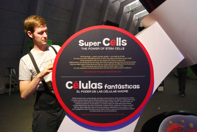 Super Cells: The power of stem cells   Celulas Fantasticas: El poder de las celulas madre