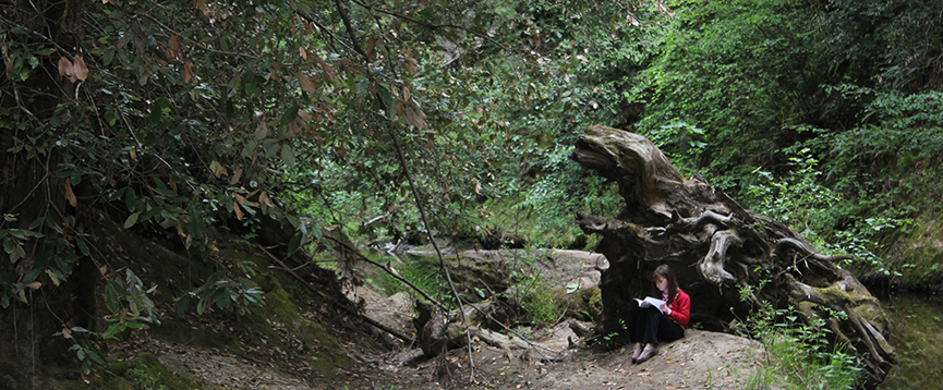 A young person sits in the forest reading