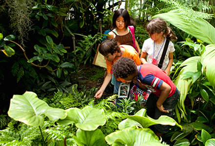 Children interacting with the environment
